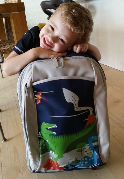 Bobble Art Cabin Bag