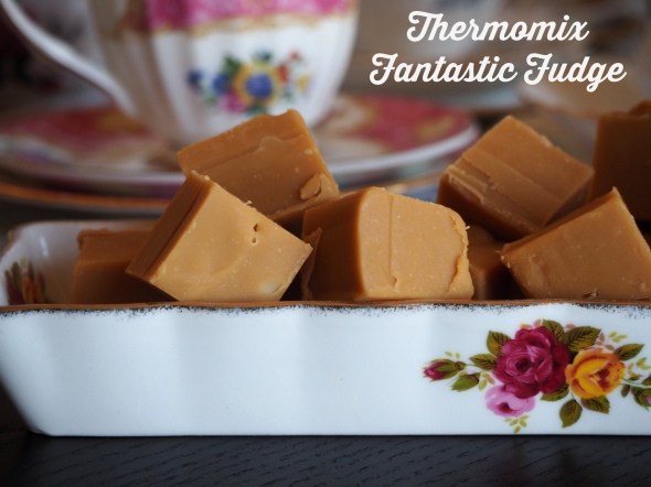 Thermomix Fantastic Fudge