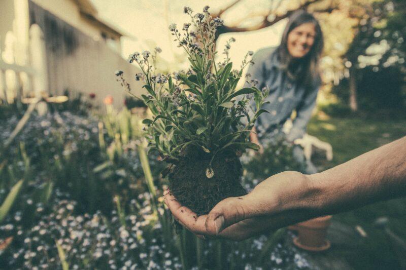 gardening for exercise