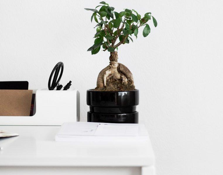 minimalist living tips